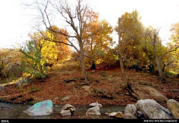 برنگ پاییز...