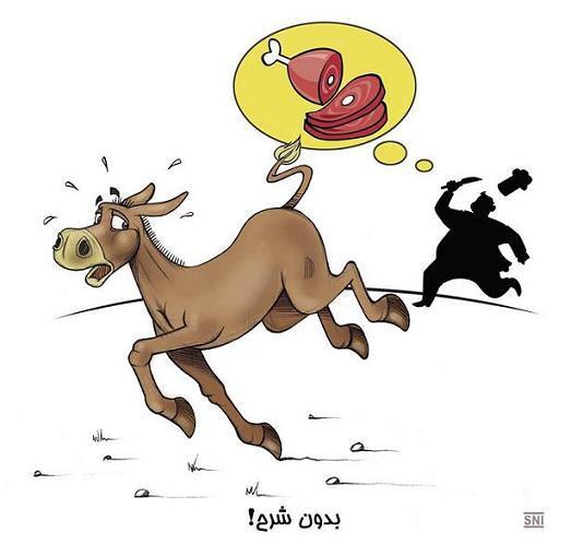 درباره دستگیری باند توزیع گوشت الاغ!/طنز