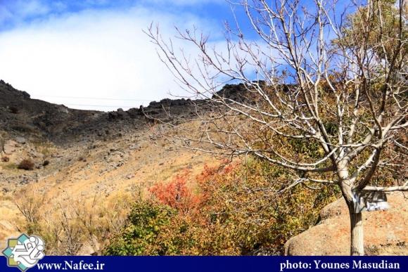یک روز در کوهستان های همدان