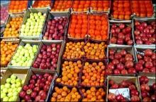 «نامرغوبی میوهها» نقل محفل نوروز