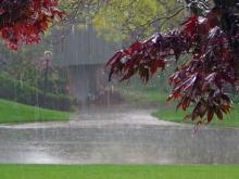 بارش باران در همدان شدیدتر می شود