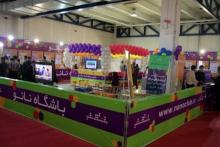 دانش آموز ملایری رتبه اول المپیاد نانو استان را کسب کرد