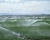 مجهز شدن ۹۰ درصد اراضی تویسرکان به آبیاری تحت فشار