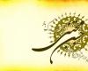برگزاری جشن میلاد امام حسن (ع) در بقاع متبرکه شهرستان نهاوند