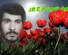 """خانواده """"شهید فرجپور"""" در همدان مورد استقبال مردم قرار گرفتند"""