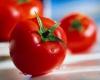 گرانی 109 درصدی گوجه فرنگی/ مرغ ارزان شد