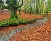 پارک بسیار زیبا و اعجاب انگیز در اسپانیا