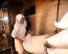 توجیه اقتصادی نداشتن احداث کارخانه آرد در اسدآباد