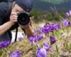 فراخوان نخستين جشنواره عكس مادستان با موضوع گردشگری زمستانی