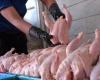 بامدیریت تولیدشاهدواقعی شدن قیمت مرغ در بازارهستیم