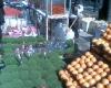 استارت خرید نوروزی در خیابان باهنر زده شد!
