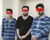 دستگیری باند سارقان مجتمع های مسکونی در همدان