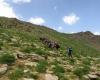 کوهپیمایی جمعی از مسئولان استان همدان به بهانه کمک به کودکان سرطانی