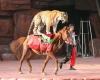 به سیرک ها دیگر مجوز فعالیت در استان همدان داده نمی شود