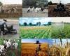 بهره برداری از 10 پروژه کشاورزی در کبودراهنگ