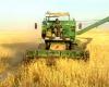 پیش بینی برداشت 40 هزار تن غلات در تویسرکان
