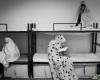اینجا«زندان شیشهای زنان»است+عکس