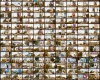 به نام مردم به کام دولت! دستور استانداری همدان به ادارات برای نصب تصاویر رئیس جمهور به نام ستاد مردمی!+سند