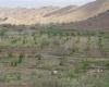 رییس انجمن آبخیزداری ایران در ملایر: