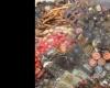 کشف 240 کیلوگرم مواد غذایی فاسد در رزن