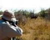 دستگیری شکارچیان غیر مجاز در شهرستان قهاوند