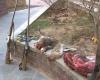 دو شکارچی متخلف در منطقه حفاظت شده خانگرمز تویسرکان دستگیر شدند