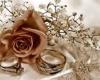 ثبت نام 150 زوج براي شركت در جشنواره پيوند آسماني