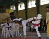 دعوت ازسه تکواندوکار خردسال ملایری به مسابقات قهرمانی کشوری